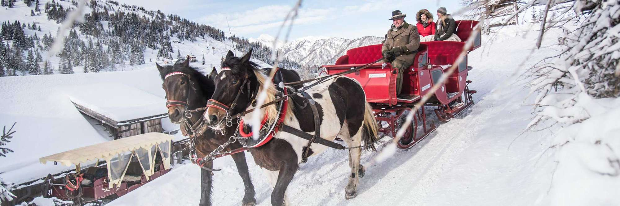 Horse-drawn sleigh ride in Gontal valley